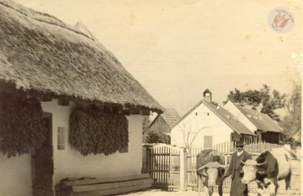 0076 52. A. Halasi József portája 1940 k. 1 .Ványi I-nétól