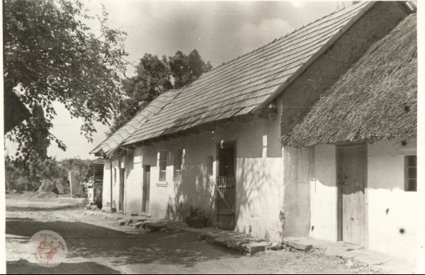 0209 A. Halasi József portája 2.